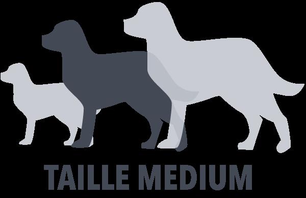 taille-MEDIUM